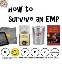 How to survive an EMP