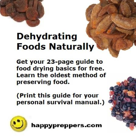 free guide to drying foods naturally