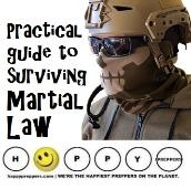 Martial law - a practical guide to surviving