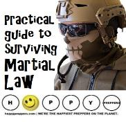 Practical Guide to Surviving Martial Law