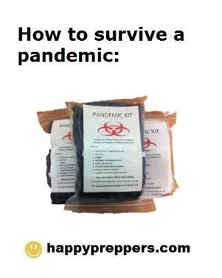pandemic preparedness plan template - you may want to read this about pandemic preparedness
