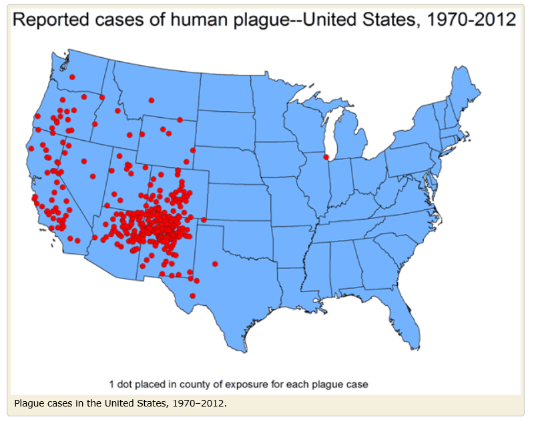 Plague Map from CDC