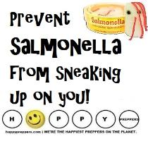 How to prevent salmonella from sneaking up on you