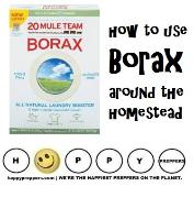 How to us Borax around the homestead