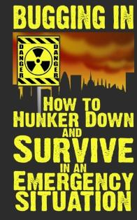 Bugging in ~ hunker dow and survive an emergency situation