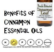 Benefits of Cinnamon Leaf Essential oil