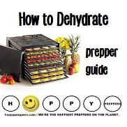 Prepper's guide on how to dehydrate foods