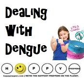 Dealing with mosquites and dengue