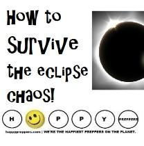 how to survive the Solar Eclipse Chaos