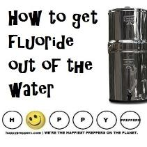 how to get fluoride out of the water