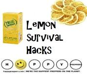 Lemon Survival Hacks