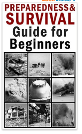 Survival Guide for Beginner  - free kindle book