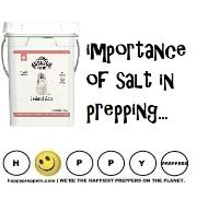 importance of salt in prepping