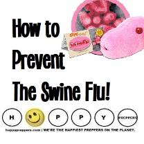 How to prevent the swine flu