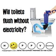Will toilets flush without electricity?